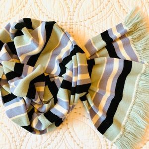 Ann Taylor  Extra Long Striped Scarf with Fringe